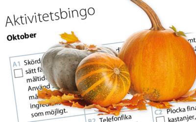 Månadens aktivitetsbingo oktober